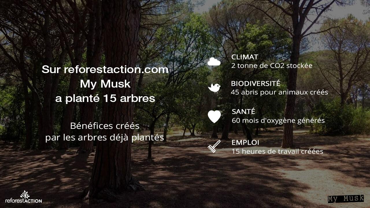 My Musk pante des arbres avec reforestaction